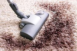 絨毯の毛玉を解消するためには?絨毯掃除のコツ3つ