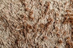 毛足の長いカーペットをキレイにする4つのポイント