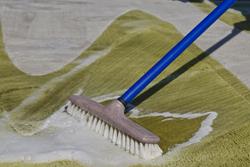カーペットの清潔さを保つ! 理想的な洗濯の頻度や方法とは?