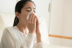 掃除不足のカーペットがアレルギー発生の原因に? この2つの関係とは