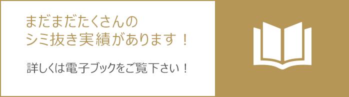 shimi_denshi_img