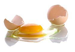 うっかり生卵を床に落とした!? 生卵の効果的な掃除方法とは