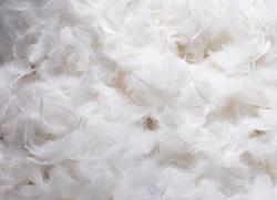 ダウンジャケットが臭い……臭いの原因と対策方法は?