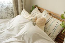 羽毛布団の湿気を取る方法とは? ずっと気持ちよく使おう!