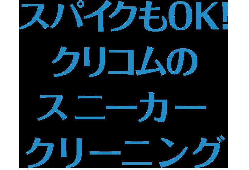 sp_midashi_spike